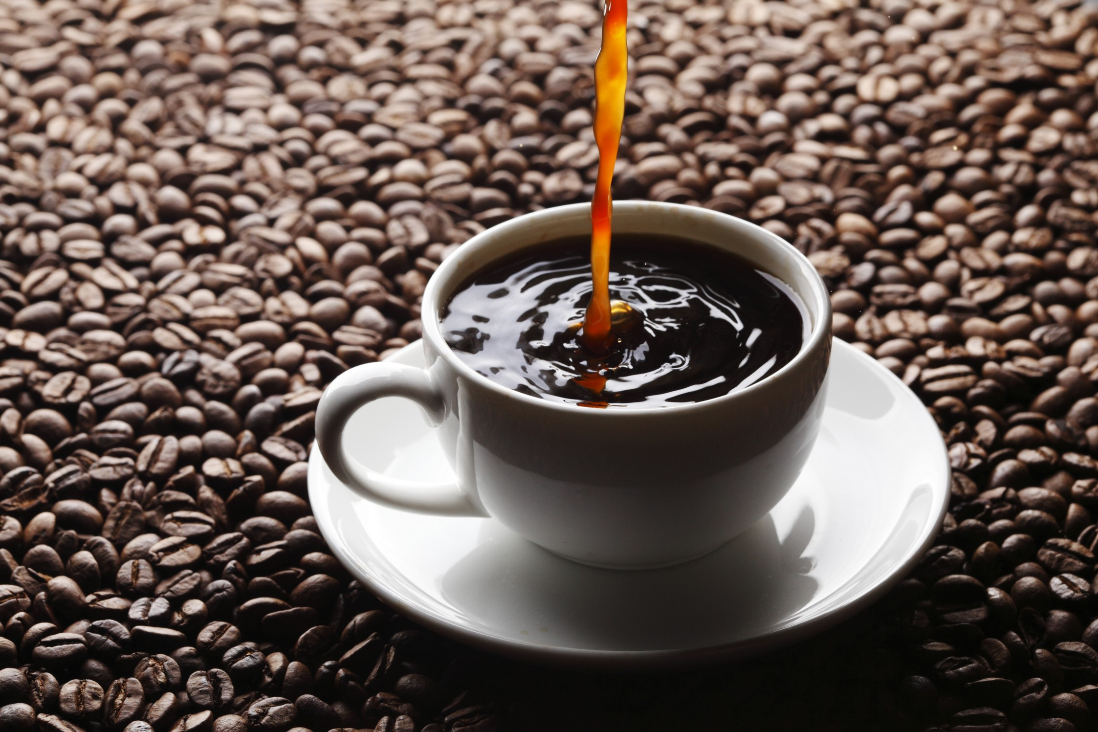 Tallahassee Refreshment Solutions | Coffee Break | Coffee Brewer